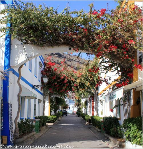 Hanging gardens in Mogan, Gran Canaria